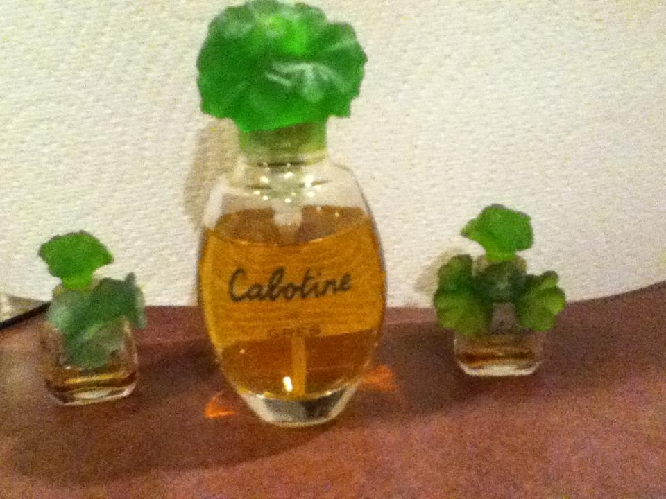 perfumes 019